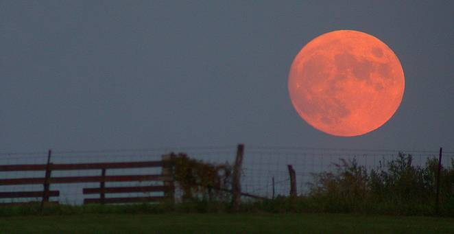 harvest_moon-662x0_q70_crop-scale