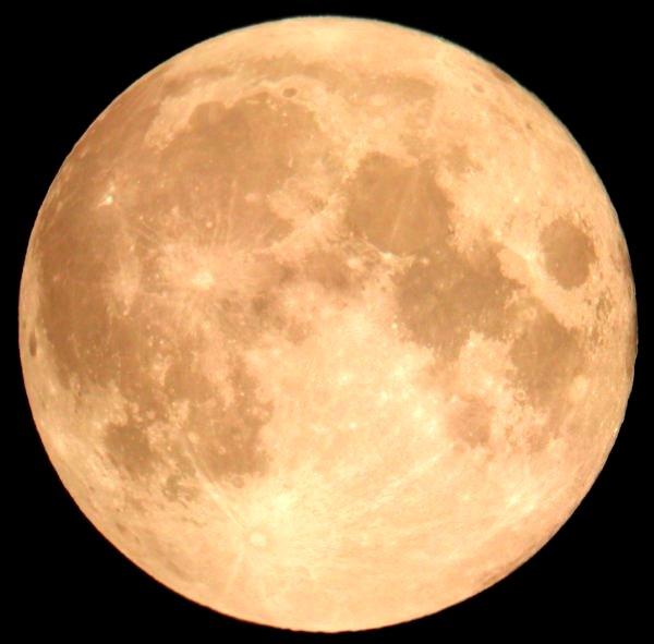 moon14day-1985-600c