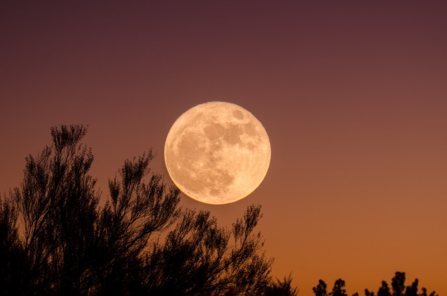 first-supermoon-in-april-2020-see-the-biggest-and-brightest-pink-full-moon-happening-on-apr-7