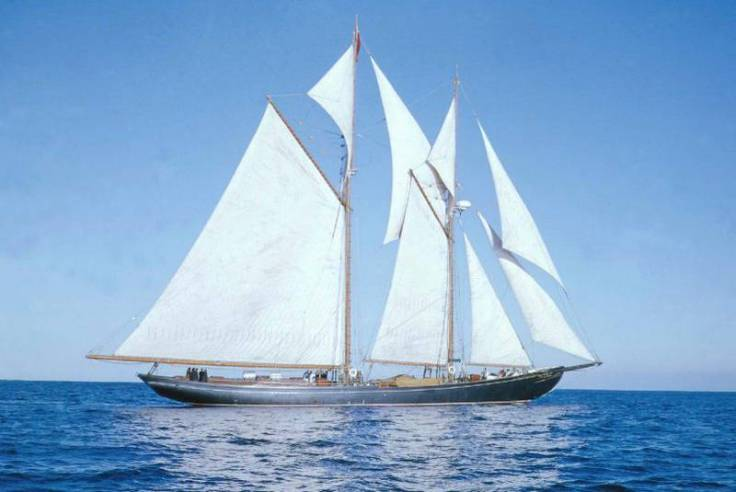 bluenose-2923783_large
